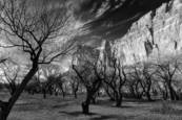 Landscapes -6 by Alan Hans