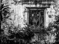 Window 8 by Beverly LaRock