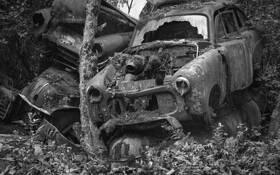 Car Wreck 9 by Bjorn Bjornson