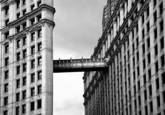 Wrigley Skybridge by Nick Carulli