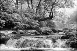 Cascade by Errick L. Cameron