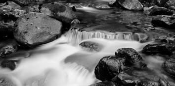 Airy Creek by Greg Osadchuk