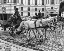 Horse Cabs by Bob Bader