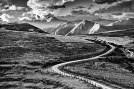 Road by Juan J. Pucci