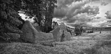 Reminiscing in Otago by Peter Kurdulija