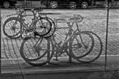 How Many Bikes by Gwen Solomon