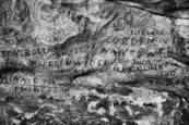 19th Century Graffiti by Timothy Floyd