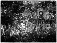 Tree Children by Scott Fowler