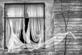 Window by Chuck Kimmerle
