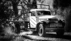 Truck Etc 6 by Allan R. Lamb