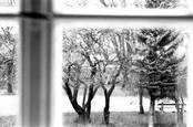 Window in Softness by Gyorgy Godja