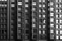 Windows by Hal Robert Myers