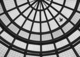 Through the Glass Ceiling by Susan Propper
