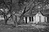 House and Trees. Cuervo NM. 2008 by Marj Green