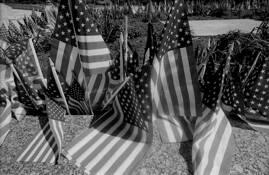 Flags of Honor by Kathleen Nademus
