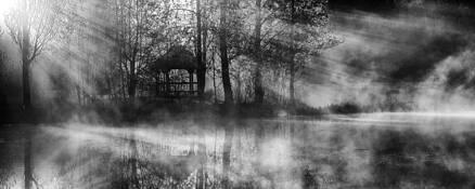 Pond by Nicholas V. Sherbina