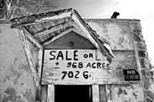 968  Acres More Or Less by Susan Stone