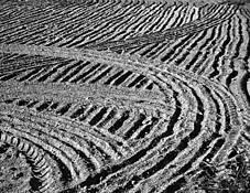 Tracks by Rajan Varadan
