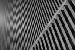 Orwellian Lines by Daniel Joder