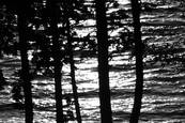 Lake of Bays by Doug Bisson