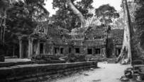 Ta Prohm Before Sunrise by David Ruderman