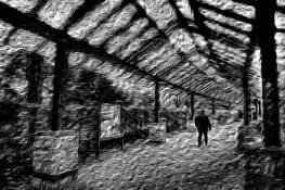 PhotoImpressions02 by Roberto Soares Gomes