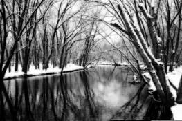 The River Runs Through It by Teresa Baber