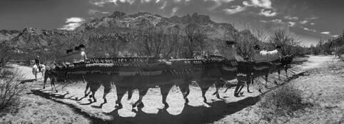 Trail Ride by Monte  H. Gerlach