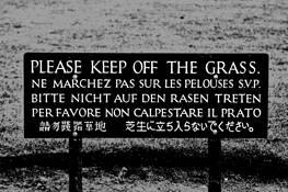 Grass by Ralph Henzler