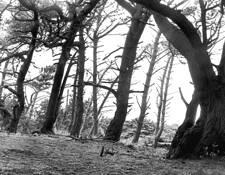 Vanishing Point #7 by Mitsu Yoshikawa