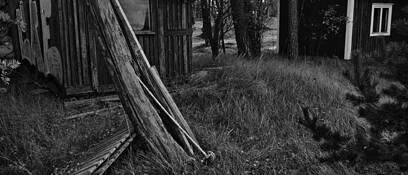 Wooden by Adrian Tirteu