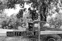 Harley Davidson Rd by Beverly Conley