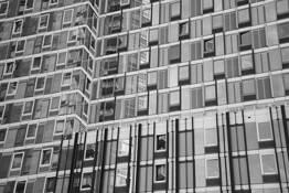 Lives Inside of Cubes by Saori Ichikawa
