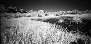 White Lake #4 by Shinya Ichikawa