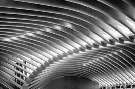 The Oculus Ribs by Paul Hetzel