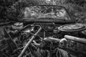 Car Cemetery 1 by Bjorn Bjornson