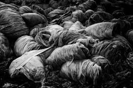 Plastic Inferno 3 by Bjorn Bjornson