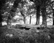 Dolmen de La Mason Trouvee by Paul Morris