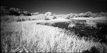 Lake in White #5 by Shinya Ichikawa