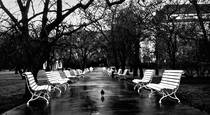 White Benches by Vladimir Kabelik