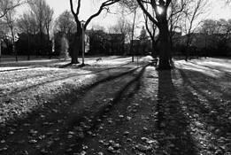 Parc Fullum by Anne Setlakwe