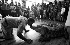 Alligator Kiss by Harvey Cobb