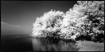 Lake in White #1 by Shinya Ichikawa