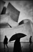 LA Showers by David Ingraham