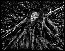 Forest Fairy by Vladimir Kabelik