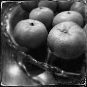Tangerines by David Pellegrini
