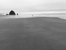 Cannon Beach by David Chui