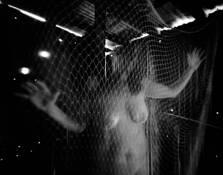Entanglement by Wayne Norton