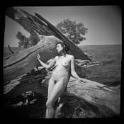 Marena by David Pellegrini