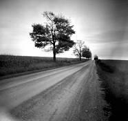 Long-road by Daniel Masci